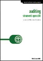 Auditing - Strumenti operativi