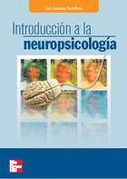 EBOOK-Introduccion a la neuropsicologia